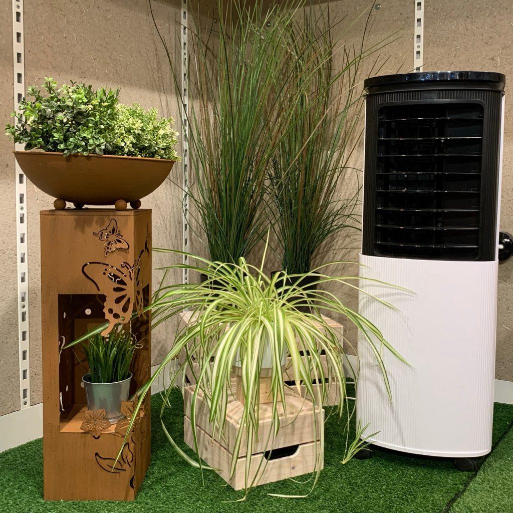Luftreinigende Pflanzen und der Hoberg Luftkühler sorgen für eine bessere Raumluft